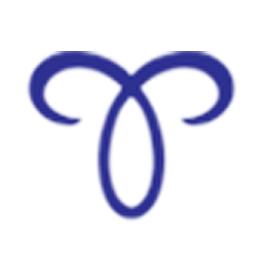 Folding Wool Pillow - 3 Fold (75 x 50cm)